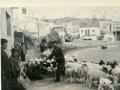 475-G22 sheep and goats w shepherd close May67 (Αντιγραφή)